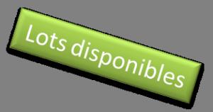 lots diponibles